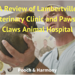 lambertville veterinary clinic