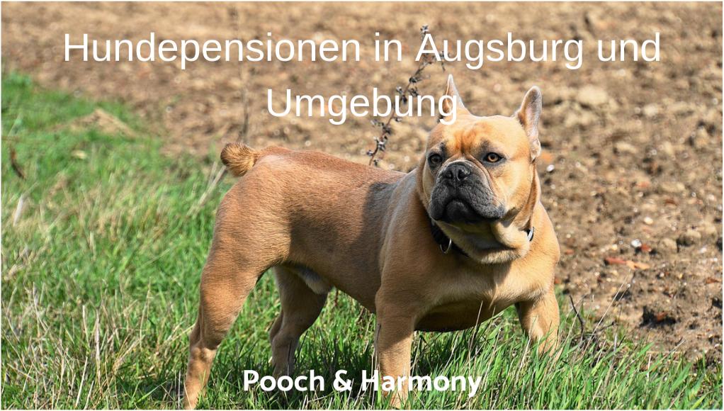 Partnersuche augsburg und umgebung