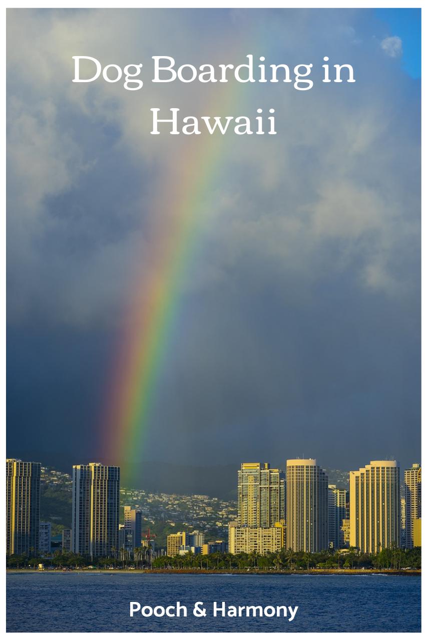 dog kennels in hawaii