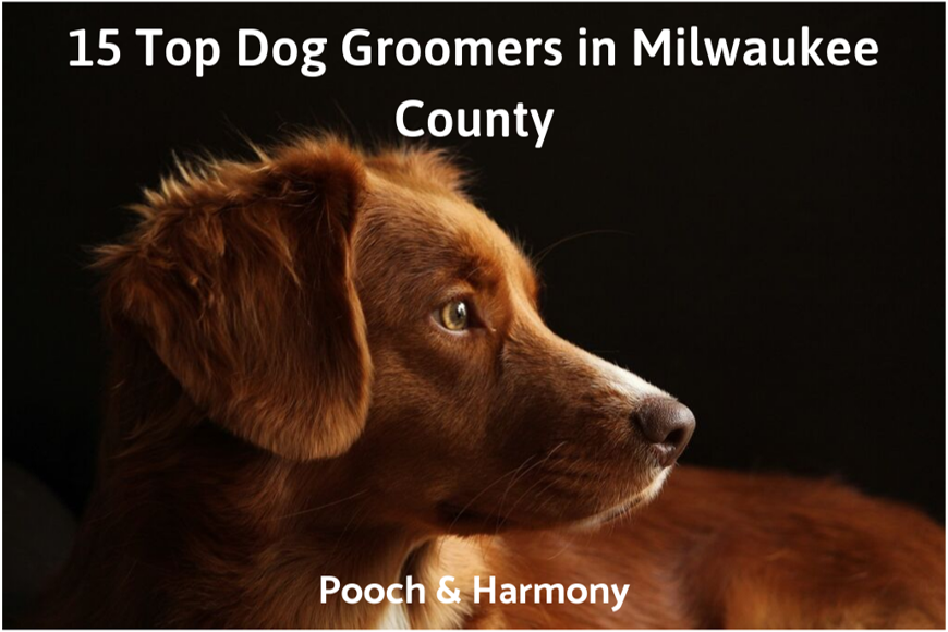 dog groomers in milwaukee county