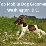 mobile dog groomers in washington, d.c.