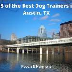 best dog trainers in austin, tx