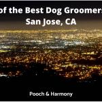 best dog groomers in San Jose, CA