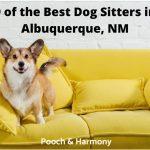 best dog sitters in Albuquerque, NM
