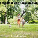 Best Dog Parks in Alabama