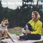 best dog parks in Indiana