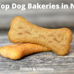 Dog Bakeries in NYC