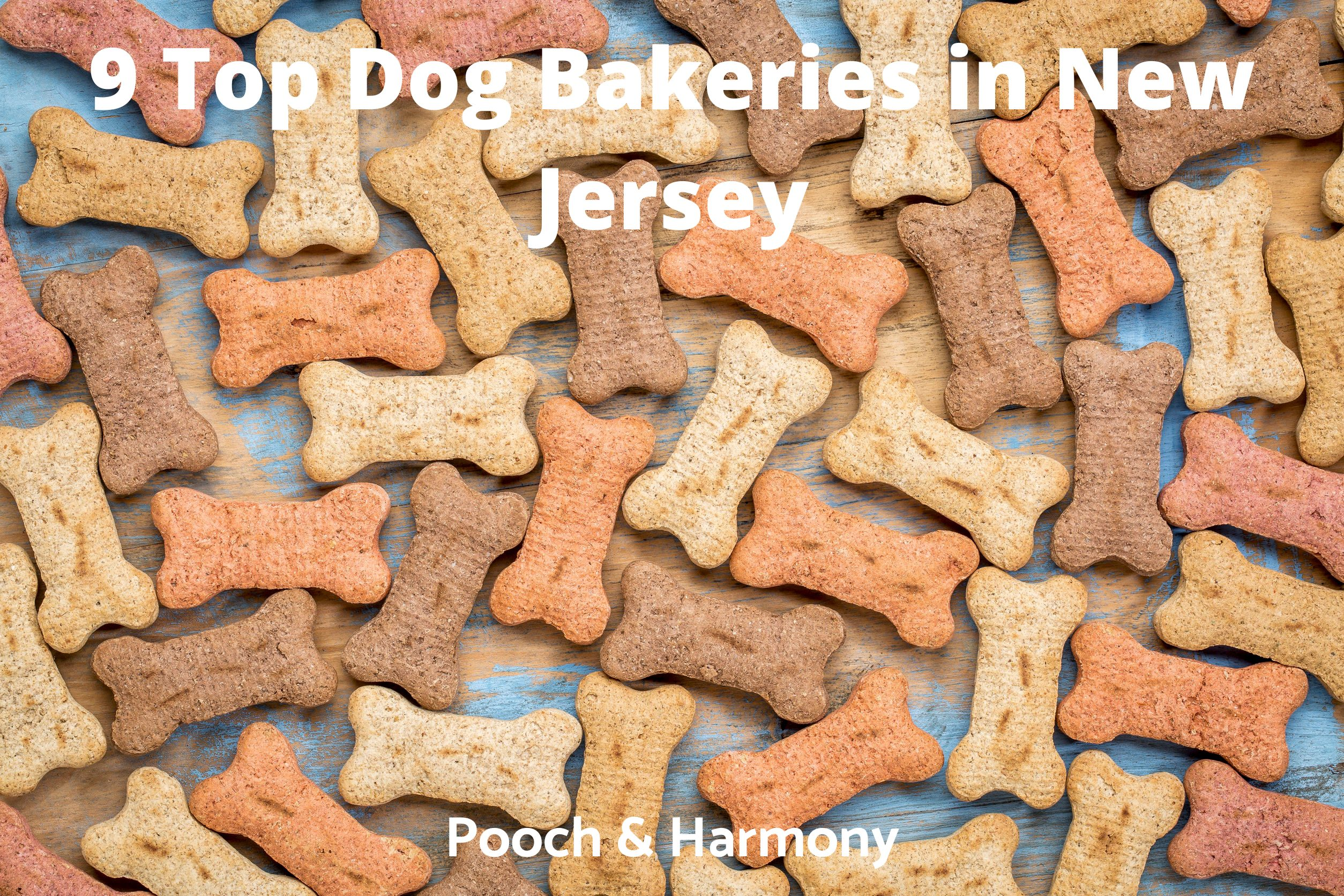 Dog Bakeries in New Jersey