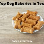 Dog Bakeries in Texas